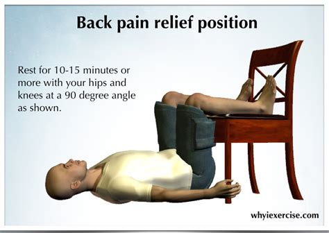 lower back remedy an illustrated guide