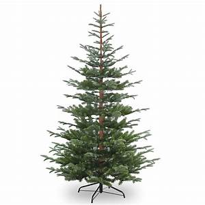 6ft Nobleman Spruce Feel-Real Artificial Christmas Tree