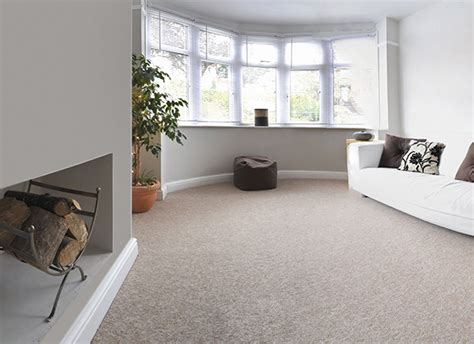 Best Carpet For Family Room Marceladickcom