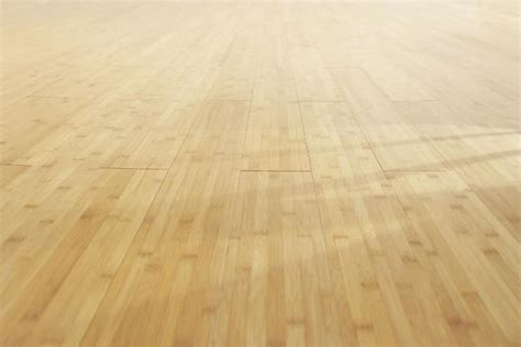 hardwood floor cleaning machine  floor lady