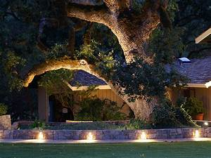Landscape lighting for your vancouver property for Outdoor tree lighting ideas
