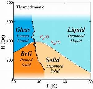 Thermodynamic Vortex Matter Phase Diagram