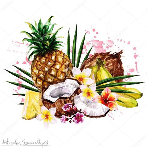 frutta clipart acquerello estate clipart frutta tropicale foto stock