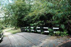 Hortensie Umpflanzen Im Topf : bambus vernichten bambus dauerhaft entfernen ~ Orissabook.com Haus und Dekorationen