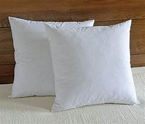 top 5 best throw pillow insert 20x20 down for sale 2017 With best euro pillow inserts