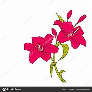 Dibujos De Flores Coloreadas
