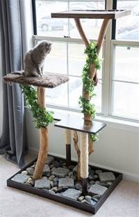 how to build a cat tower make a cat tree using real branches my amazing diy cat tree