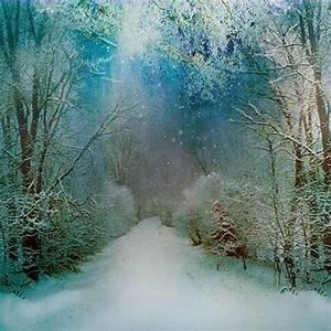 Mystical Winter Wonderland   ️Winter Wonderland ️ ...