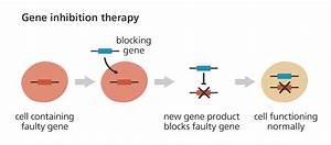 What Is Gene Therapy