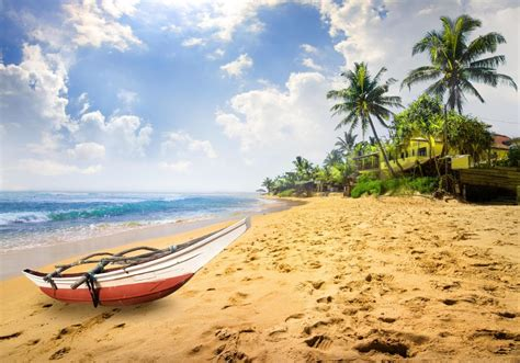23 Reasons To Visit Sri Lanka Telegraph