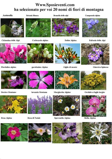nomi di fiori nomi fiori per tavoli matrimonio jf56 187 regardsdefemmes