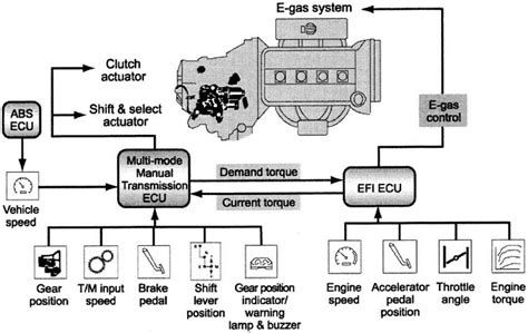 Toyota Echo Engine Emissions Diagram