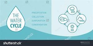 Water Cycle Vector Diagram Precipitation Collection Stock