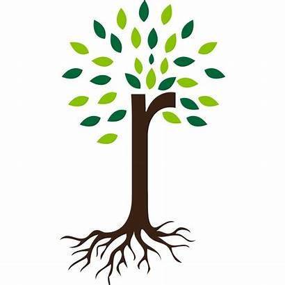 Roots Root Plant Tree Icon Clipart Icons