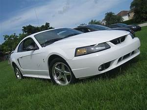 2001 Ford Mustang SVT Cobra - Pictures - CarGurus