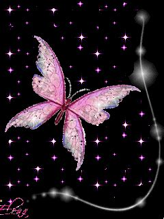 Animated Butterfly Wallpaper Gif - animated wallpaper screensaver 240x320 for cellphone