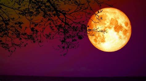 maior eclipse lunar  seculo xxi lua de sangue sera