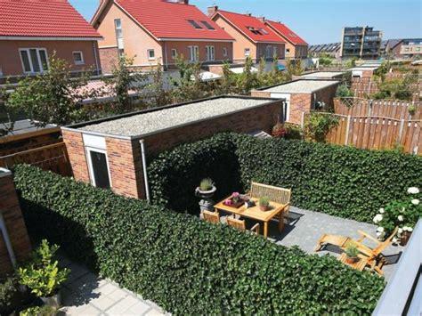Sichtschutz Schuetzt Privatsphaere by Sichtschutz F 252 R Terrasse Lebendige Gr 252 Ne Wand Sch 252 Tzt