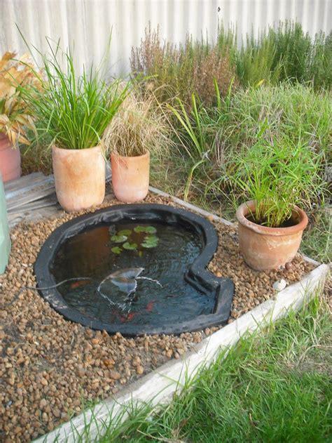 fish  garden pond backyard design ideas