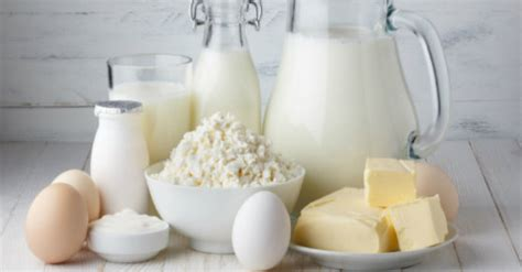 why are eggs dairy the real truth about dairy everything you need to know about eggs milk butter cheese