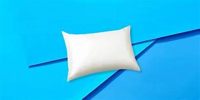 Silk Pillowcase Alaska Bear Pillow