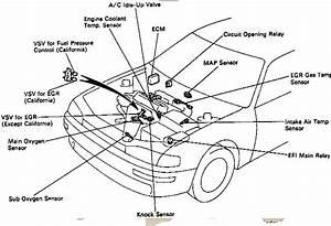 1995 Toyota 4runner Heater Hose Diagram  1995  Free Engine