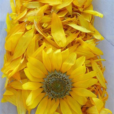 sunflower wedding decorations dry sunflower petals