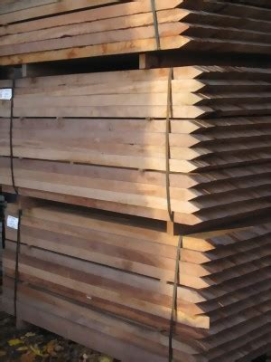 Bongossi Zaunpfahl Holzwohnengartende