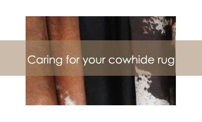 Cowhide Rug Maintenance by Cowhide Rugs How To Clean Your Cowhide Rug Cowhide