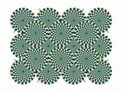 Perception Motion Illusions Optical Illusion Visual Example