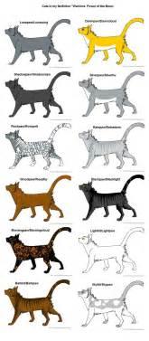 warrior cats names warrior cat names myideasbedroom
