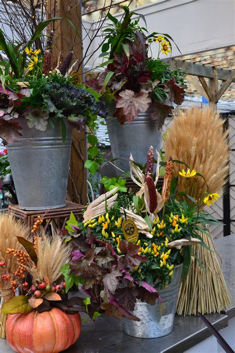 Fall for this Container Garden - Sheridan Nursuries Blog
