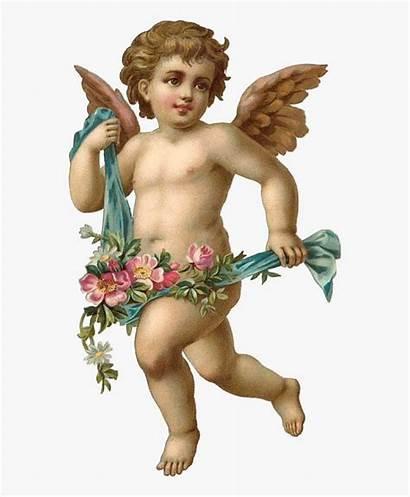 Angel Cherub Stickers Wings Edits Clipart Transparent