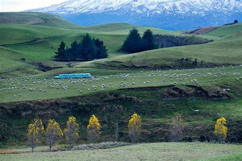 Filenew Zealand Landscape 8674 Wikimedia Commons