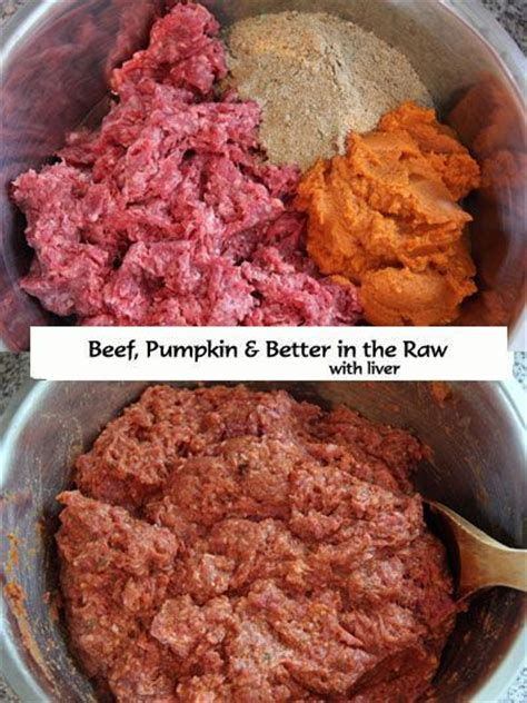 homemade raw dog food recipe beef pumpkin