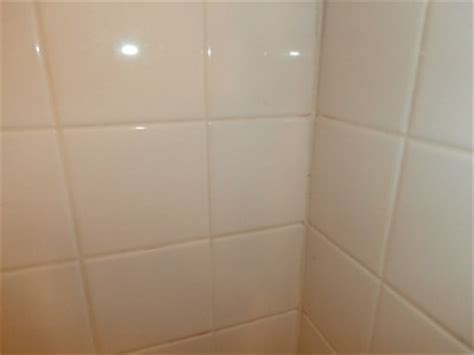painting discolored grout thriftyfun