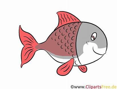 Clipart Fisch Bild Kostenlos Clip Gratis Tiere