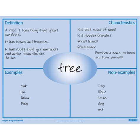 vocabularyobject  square ashleys teaching strategies