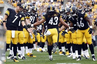 Troy Polamalu Steelers Nfl Wallpapers Today Pittsburgh