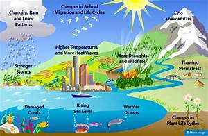 Global Warming Or Climate Change? What's The Difference ...