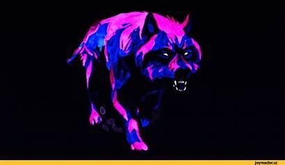 Wolf Purple Steam Artwork Community