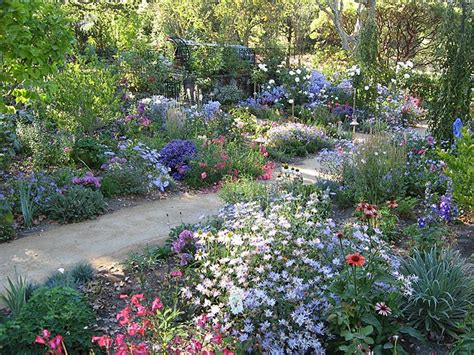 17 Best Images About Cottage Gardening On Pinterest