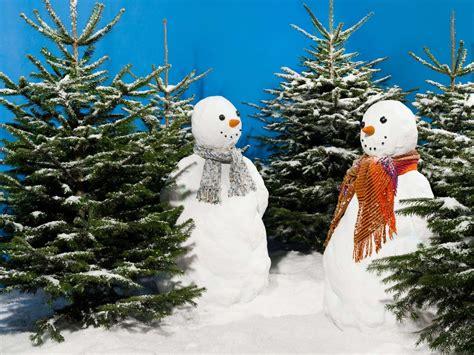 Weihnachtsbaum Bunt Geschmückt by Wei 223 Er Weihnachtsbaum Geschm 252 Ckt Bunt 10 Fakten Rund Um