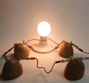 Potato And Light Bulb Science Project: project click for details potato battery light bulb science project,Lighting