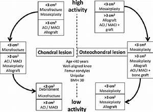 Algorithm For Chondral And Osteochondral Knee Injuries Related With