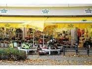 Garten Landschaftsbau Münster Hiltrup by Bilder Und Fotos Zu Blumen Risse In M 252 Nster Marktallee