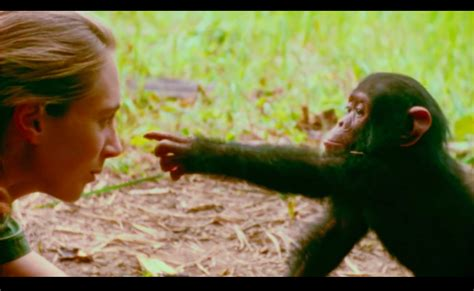 jane  goodall documentary shows work  young woman
