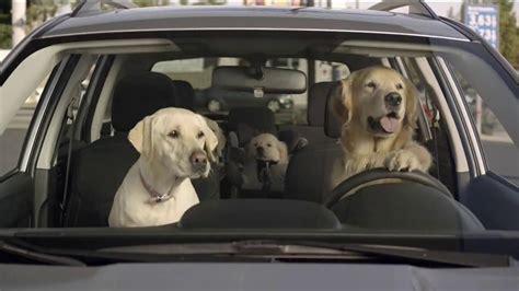 Subaru Tv Commercial, 'dog Tested