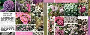 Que Planter En Juin : que planter dans un sol calcaire blog promesse de fleurs ~ Melissatoandfro.com Idées de Décoration