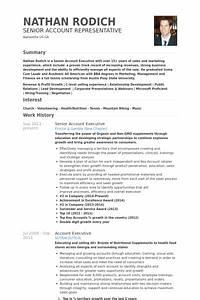 Exekutive cv beispiel visualcv lebenslauf muster datenbank for Account executive resume